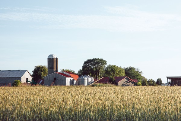 ferme_augredeschamps_etable_silo_champs