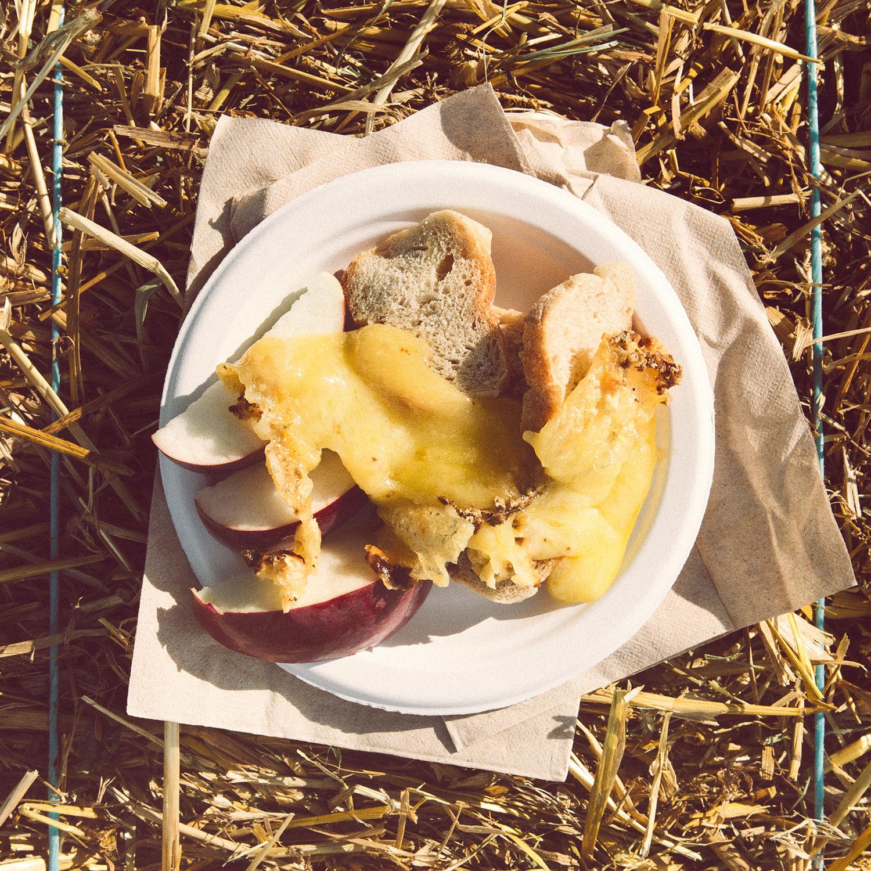 fromage_mishtan_assiette_pain_pommes