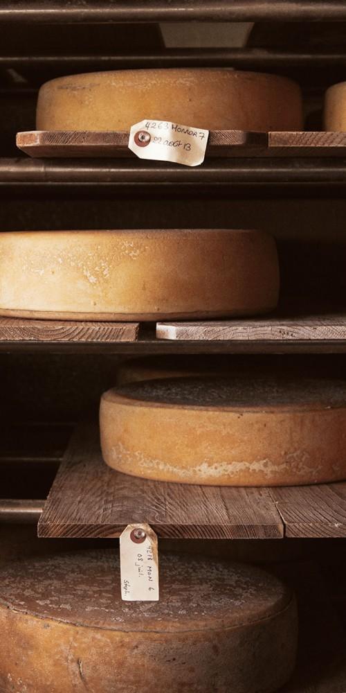 fromage_monnoir_affinage_meules