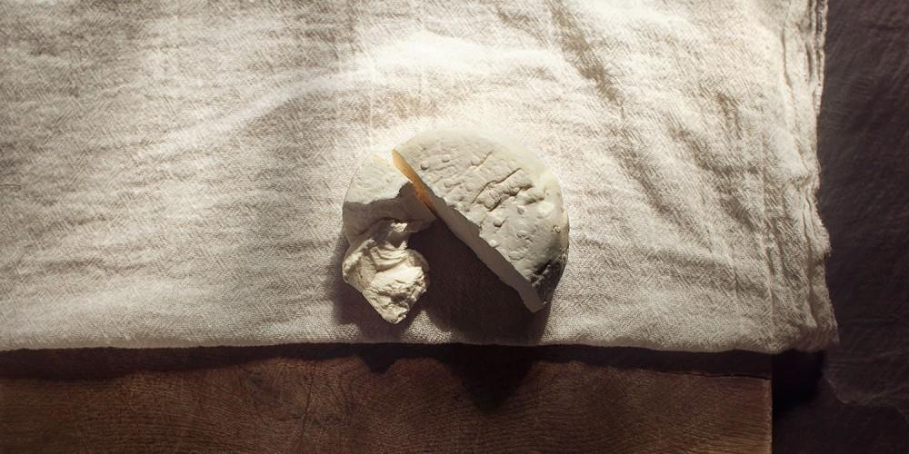 fromage_peningouin_meule_morceau